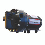 Remco Ag Sprayer Pump 5.3GPM, 1/2NPT, Demand, 60psi, #5537-1E1-82B-B