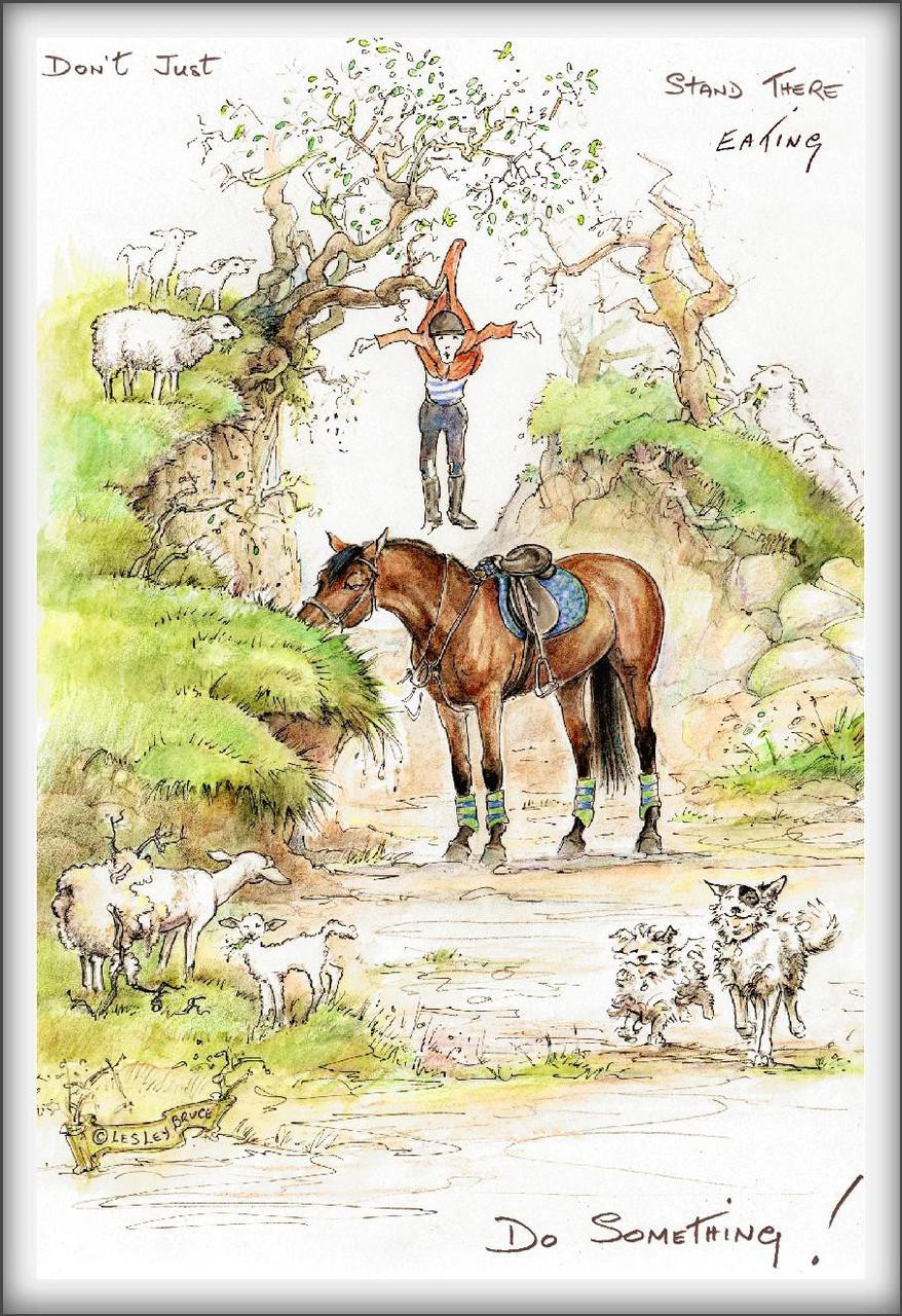 Don T Just Stand There Funny Horse Cards Jude Too Lesley Bruce Bon Vivant Unique Equestrian Supply Accessories