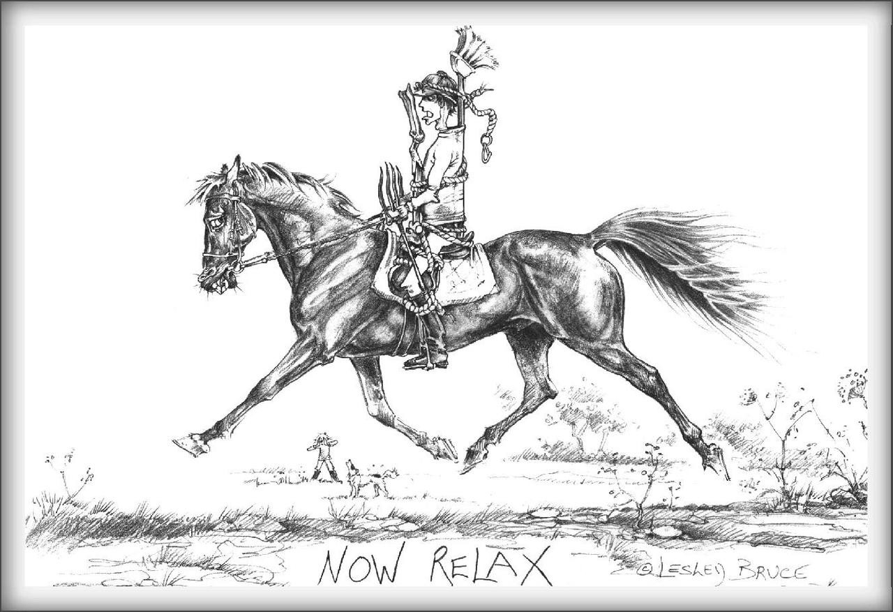 Now Relax Funny Horse Cards Jude Too Lesley Bruce Bon Vivant Unique Equestrian Supply Accessories
