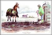 Horse Card:  Pretty Please #JT42