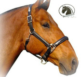Black Leather Bling Halter - Adjusts on Both Sides of the Crown and on the Noseband