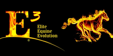 E3 Elite Pharmaceuticals Inc