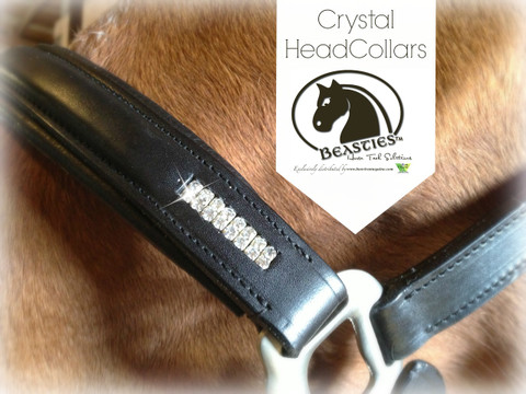 Gorgeous Bling and Leather Halter by Beasties™