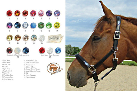Custom and Colorful Bling and Leather Halter by Beasties™.  Over 20 colors to choose from!