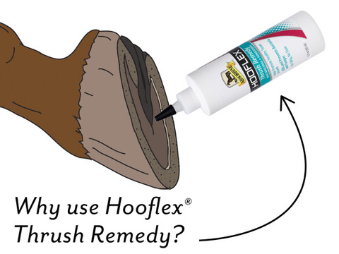 Hooflex Thrush Remedy 12 oz. Bottle