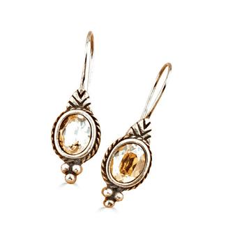 Golden Shadow Ray Of Light Drop Earrings (E4336)