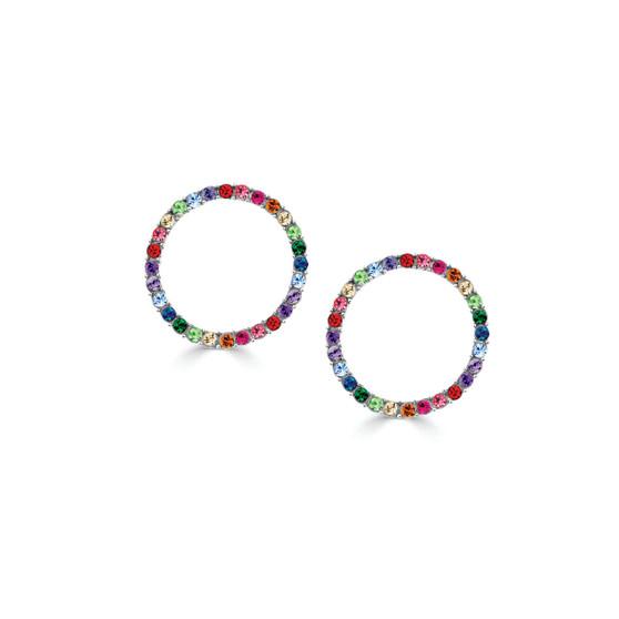 Bold Rainbow Earrings (E4519)-R699