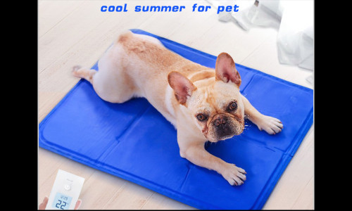 Pet cooling gel mat S
