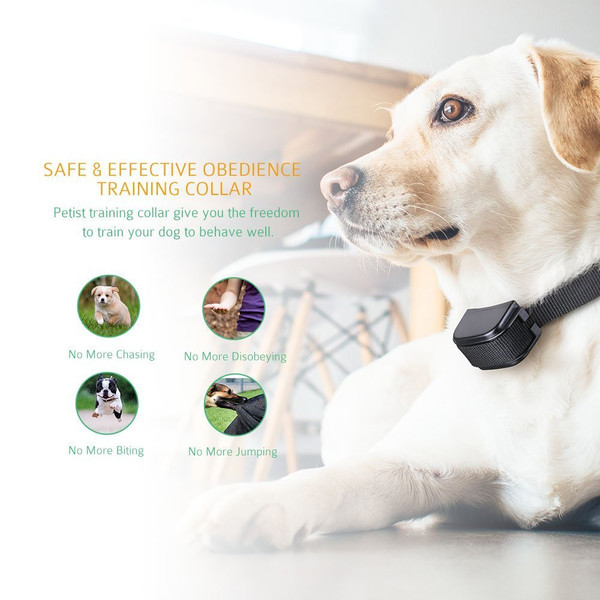 Remote Dog Training collar with Beep  Vibration  Shock Electric