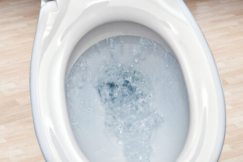 Can I Flush That? A List of Items You Should and Should Not Flush When You Have a Septic System