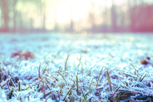 Prepare Your Septic System for Winter
