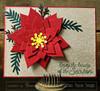 Poinsettia Die Set