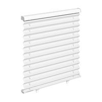 Skysol Motion Pleated Blind