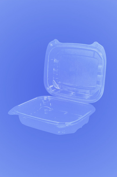 WIDE HINGED DELI CONTAINER