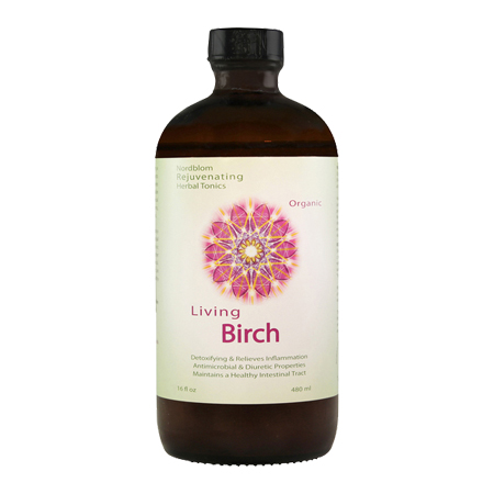 Organic Living Fermented Birch probiotic supplement 16fl oz