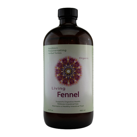 Organic Living Fermented Fennel probiotic supplement 16fl oz