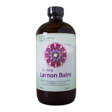 Living Fermented Lemon Balm 16 fl. oz.