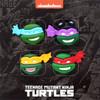 Teenage Mutant Ninja Turtles Exclusive Pin & Coin Set