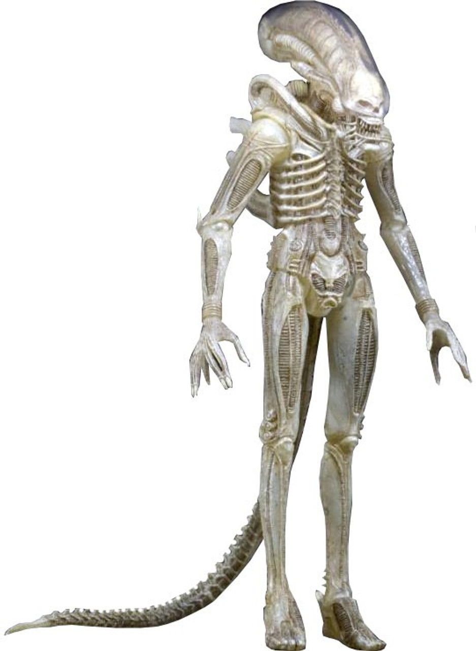 Series 7 Aliens ~ TRANSLUCENT XENOMORPH BIG CHAP ALIEN ACTION FIGURE ~ NECA
