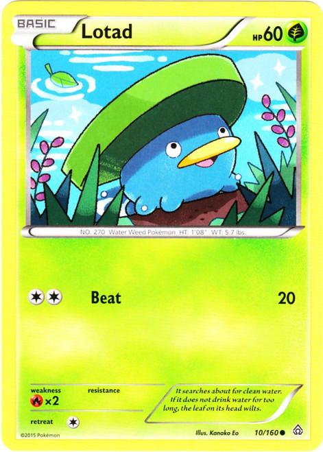 Pokemon X & Y Primal Clash Common Lotad #10