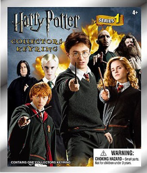 3D Figural Keyring Harry Potter Series 1 Mystery Pack