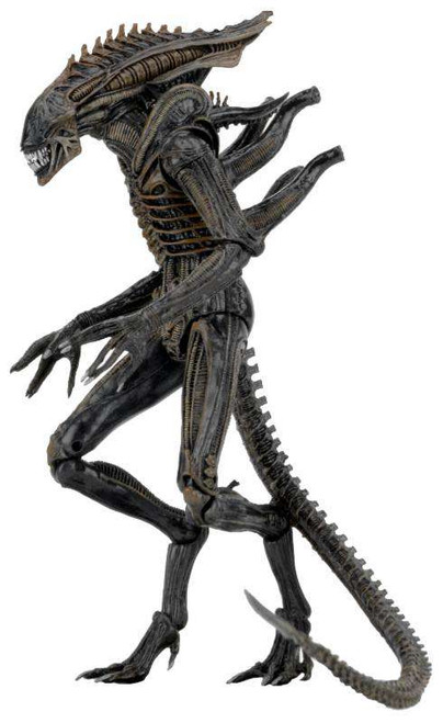 NECA Aliens Series 11 Xenomorph Defiance Action Figure [Dark Horse]