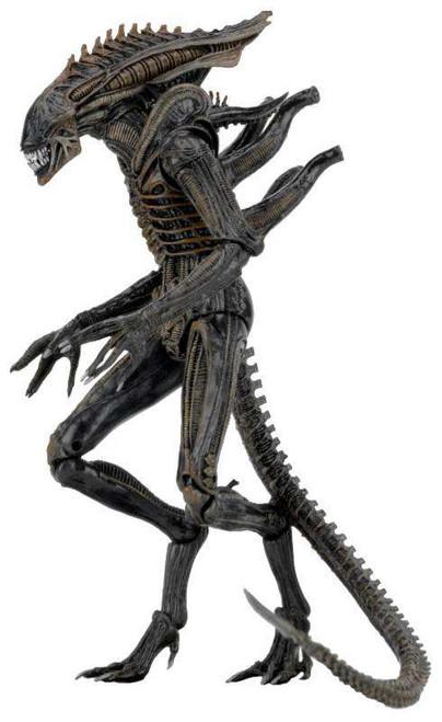 NECA Aliens Series 11 Xenomorph Defiance Action Figure [Dark Horse]