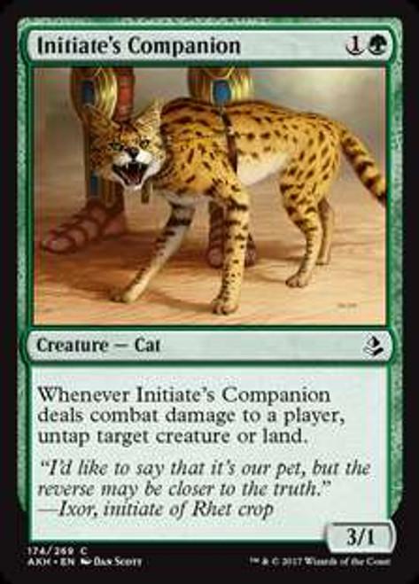 MtG Amonkhet Common Foil Initiate's Companion #174