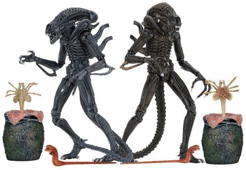 NECA Warrior BLUE & BROWN Aliens Set of Both Action Figures [Ultimate Versions]