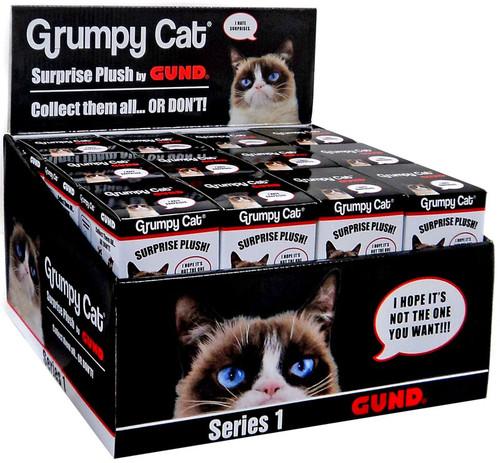 Series 1 Grumpy Cat Mystery Box [24 Packs]