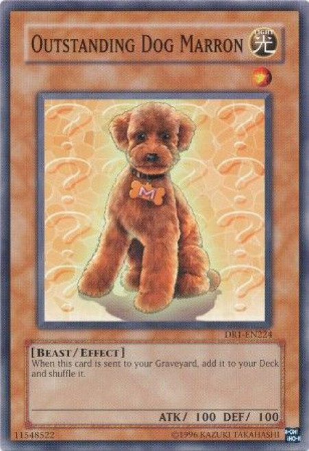 YuGiOh Dark Revelation 1 Common Outstanding Dog Marron DR1-EN224