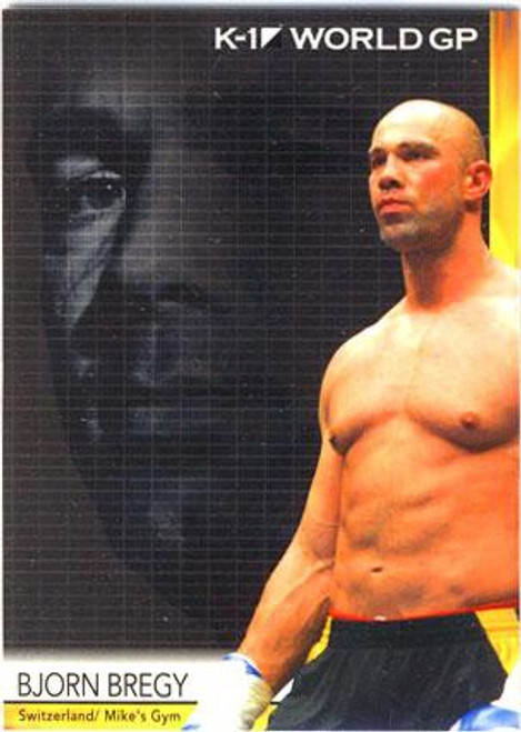 MMA K-1 World GP Bjorn Bregy #33