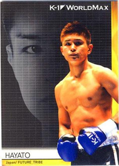 MMA K-1 World GP Hayato #51