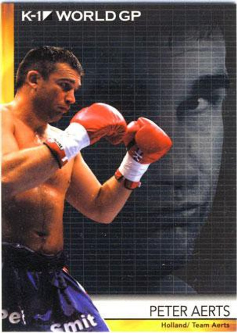 MMA K-1 World GP Peter Aerts #09
