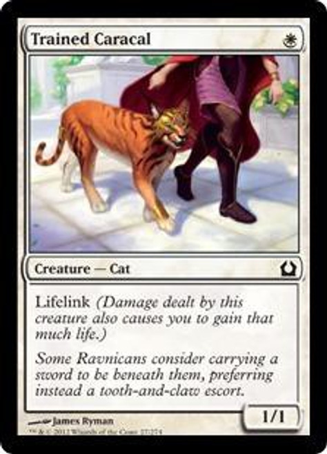 MtG Return to Ravnica Common Trained Caracal #27
