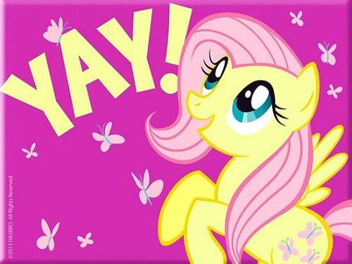 My Little Pony Fluttershy Magnet [Yay]