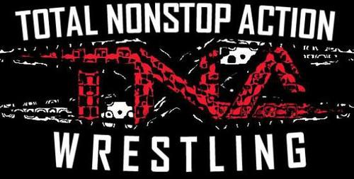 TNA Wrestling TNA Series 2 World Championship Championship Belt