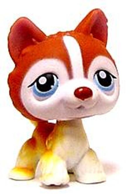 Littlest Pet Shop Husky Figure [Brown Loose]