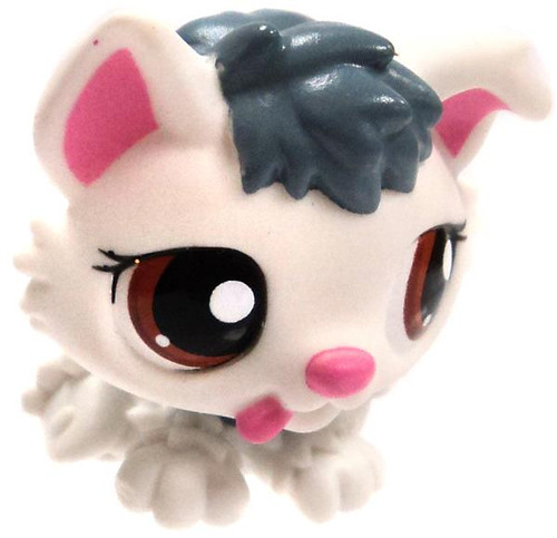 Littlest Pet Shop Cutest Pets Husky Puppy 1.5-Inch Mini Figure #2439 [White Loose]