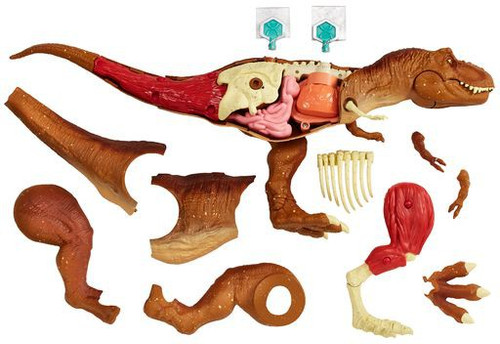 Jurassic World Fallen Kingdom Tyrannosaurus Rex STEM Anatomy Kit
