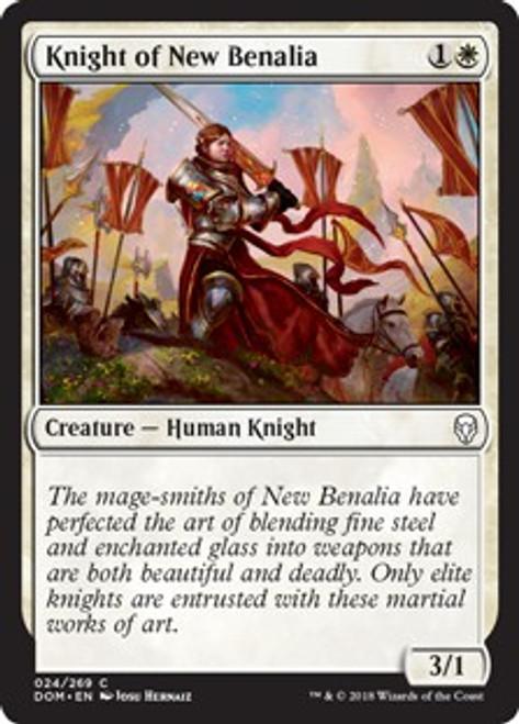 MtG Dominaria Common Knight of New Benalia #24