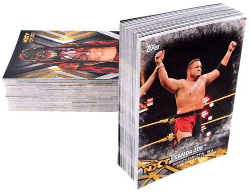 WWE Wrestling Topps 2017 NXT Trading Card Set [100 Cards]