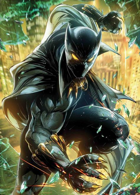 Marvel Comics Black Panther #5 Comic Book [Battle Lines Variant]