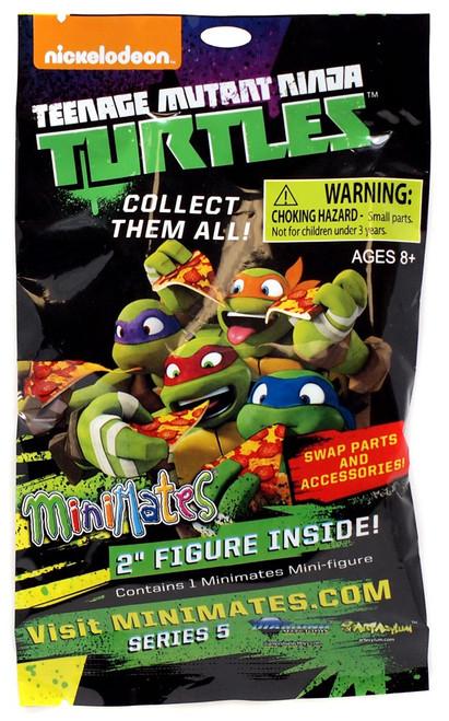 Teenage Mutant Ninja Turtles Minimates Series 5 Mystery Pack