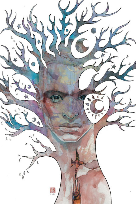 Dark Horse American Gods: The Moment of The Storm #1 Comic Book [David Mack Cover B]