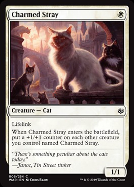 MtG War of the Spark Common Charmed Stray #8
