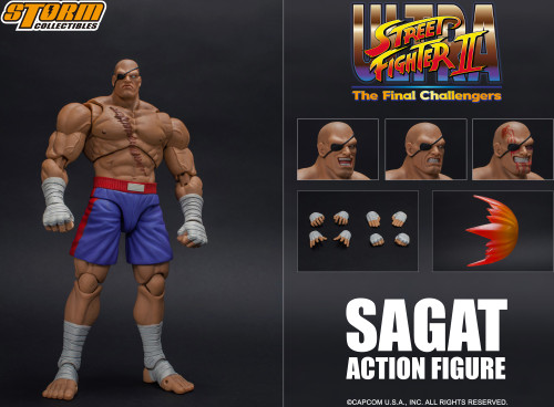 Street Fighter II Sagat Action Figure