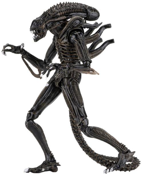 NECA Warrior BROWN Alien Action Figure [Ultimate Version, Damaged Package]