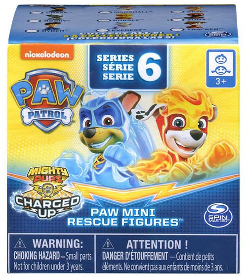 Paw Patrol Mighty Pups Charged Up Series 6 Paw Mini Figures Mystery Pack