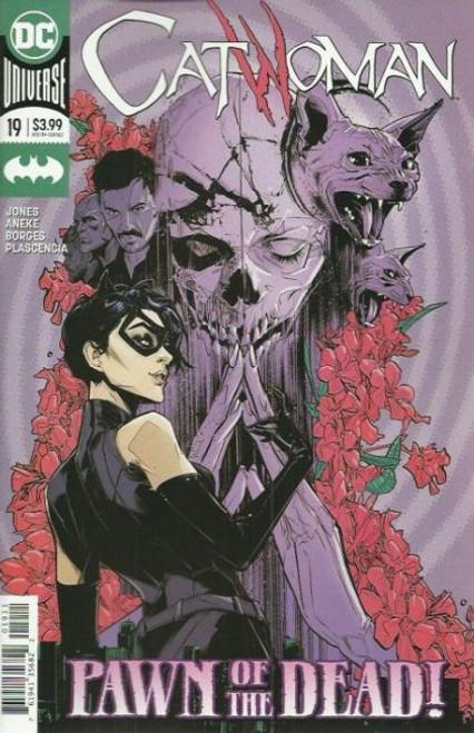 DC Comics Catwoman, Vol. 5 #19A Comic Book